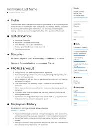 Manager Resume Bank Branch Business Plan Proj