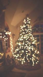 christmas tree background tumblr. Delighful Tumblr Blurry Christmas  Bokeh Tree Tumblr In Tree Background Tumblr D