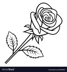 Floral Sketch Designs Rose Sketch 005