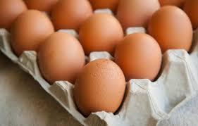 卵は体に良い、悪い? 最新の調査結果から言えること | Forbes JAPAN(フォーブス ジャパン)