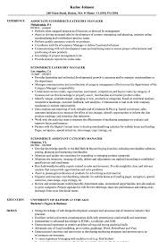 Ecommerce Analyst Sample Resume Ecommerce Category Manager Resume Samples Velvet Jobs 19