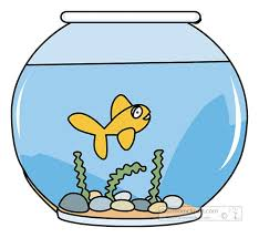 picture clipart 5 443 free fish clip art images and graphics