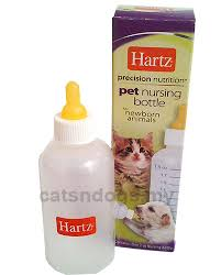 get your puppies and kittens supplies nursing bottle teatilk are all designed for small orphaned puppies and kittens
