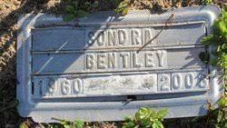 Sondra Jane Bentley (1960-2008) - Find A Grave Memorial