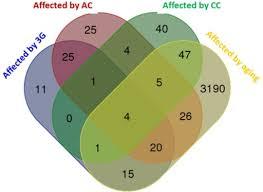 Venn Diagram Bioinformatics Venn Diagram Comparing The Effects Of All Experimental Open I