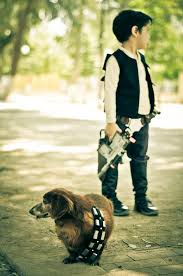 chewbacca dog costume costume model ideas