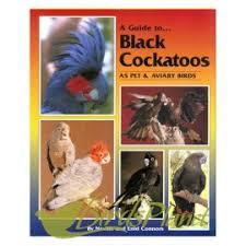 A Guide to Black Cockatoos as Pet and Aviary Birds (Soft Cover)