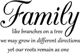 Family Quotes Beauteous 48 Top Family Quotes And Sayings