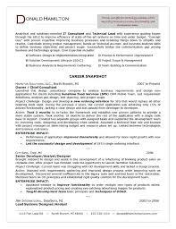 Sample Security Consultant Resume Consultant Resume Samples Blaisewashere Com