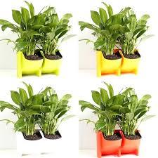 self watering hanging planters 2 pockets vertical wall planter garden flower pot large outdoor big lots