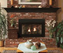 empire small innsbrook direct vent clean face fireplace insert with blower millivolt controls