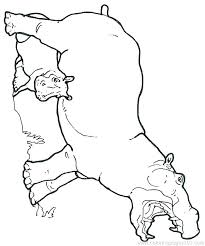Hippopotamus Coloring Page Baby Hippo Coloring Pages Hippo Coloring