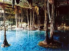 Image result for riviera maya cenotes