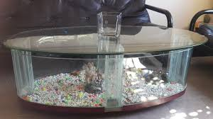 fish tank coffee table in south africa