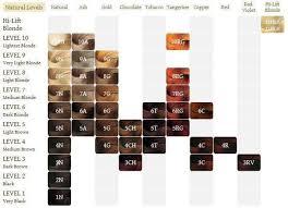 Argan Oil Hair Color Chart Pin On Beauty