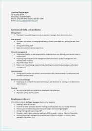 It Project Manager Resume Examples Professional Cto Resume Examples