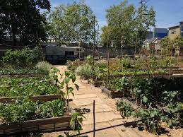 delaware community garden projects awarded grants