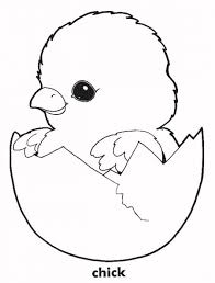 Small Picture Cute chicken coloring pages chick ColoringStar