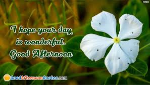 Beautiful Afternoon Quotes Best Of I Hope Your Day Is Wonderful Good Afternoon GoodAfternoonQuotesCom