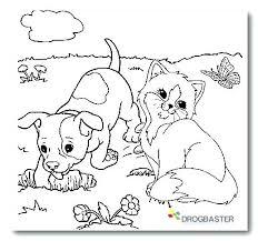 Una Raccolta Di Popolare Immagini Di Gatti Da Colorare Disegni Da