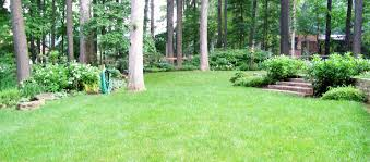 Small Picture Garden Design Garden Design with woodland garden on Pinterest