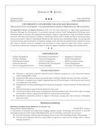 professional resume writers in maryland resume writers in jacksonville fl resume examples