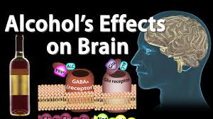 Image result for the ill effects of alcohol