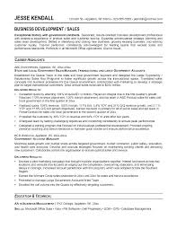 Government Resumes Examples Example Of Resume Title Financial