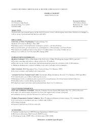 Simple Resumes Templates The Format Of Resume Template For ...