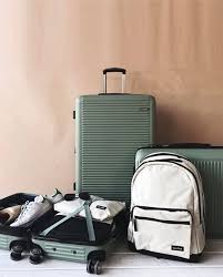 best carry on luggage 2017 reviews of raden luggage calpak luggage