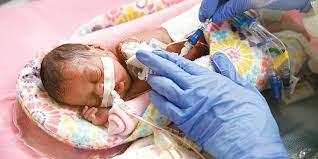 neonatal nurse pracioner msn