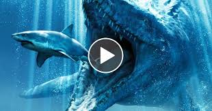 megalodon shark still alive proof 2014. Contemporary 2014 Megalodon Sharks Still Lives Evidence That MEGALODON Is Not Extinct  Documentary Intended Shark Still Alive Proof 2014 I