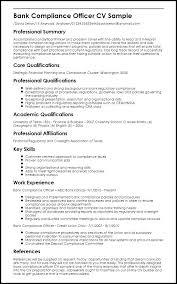 Summary Sample For Resume Emelcotest Com