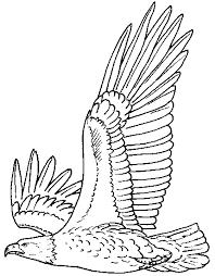 Deep Bald Eagle Coloring Page