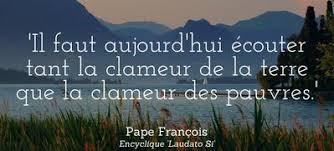 de Laudato si' (François)