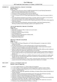 Principal Project Engineer Resume Samples Velvet Jobs