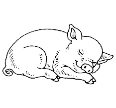 sleeping pig colorear sleeping pig coloring page coloringcrew com on coloring book pig