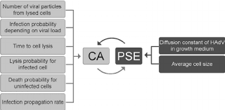 Hybrid Model Consisting Of A Ca Pse A Flow Chart Of The