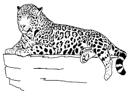 Small Picture Jaguar Coloring Pages for KidsFree Coloring Pages For Kids Free