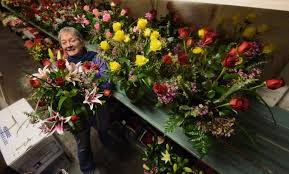 butch egys staff photographer kathi gnall general manager at mccarthy remick flowers in scranton is surrounded by a colorful array of roses