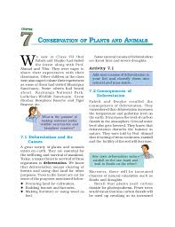 essay writing on conservation of nature original content help on dissertation risk management in banks