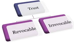 Image result for revocable trust