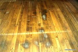 removing urine stains from hardwood floors how to remove pet wood on engineered