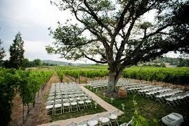 southern oregon wedding venue wedding ceremony inside the vineyard intimate