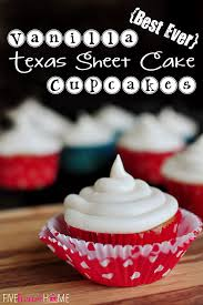 vanilla texas sheet cake best ever vanilla texas sheet cake cupcakes with cream cheese frosting
