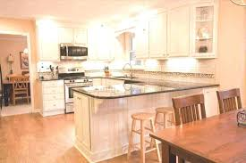 best kitchen cabinets for the money cabinet brands of reviews brand names who makes