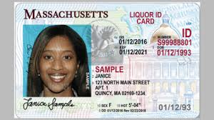 sample id cards massachusetts id and drivers license mount holyoke college
