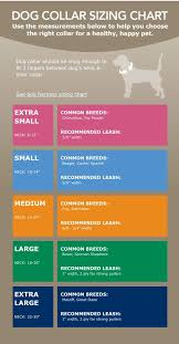 Small Dog Collar Size Chart Dog Collar Sizing Chart Via Petsmart Com Diy Dog Collar