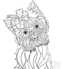 You can give a coloring page to a 2 years baby and to the schoolboy. 24 Free Pet Coloring Pages Better Homes Gardens