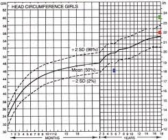 The Value Of Head Circumference Measurements After 36 Months
